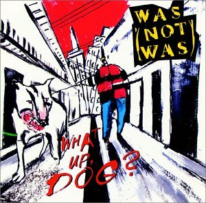Was (Not Was) Walk The Dinosaur cover art