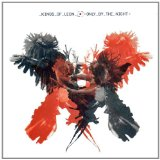 Kings Of Leon Use Somebody cover kunst