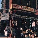 Beastie Boys Shake Your Rump cover kunst