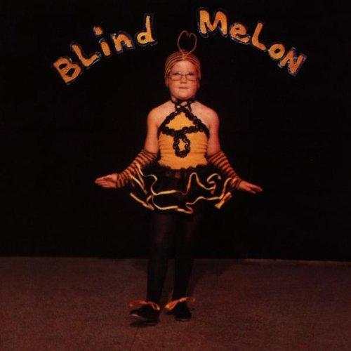No Rain | Blind Melon | Lyrics & Chords