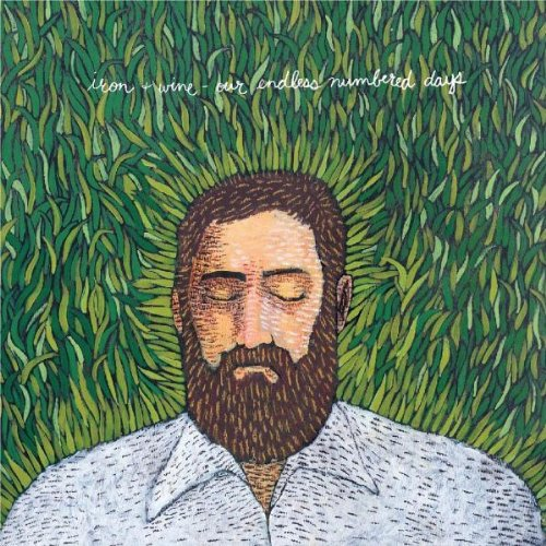 Iron & Wine Naked As We Came cover art