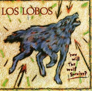 Los Lobos A Matter Of Time cover art