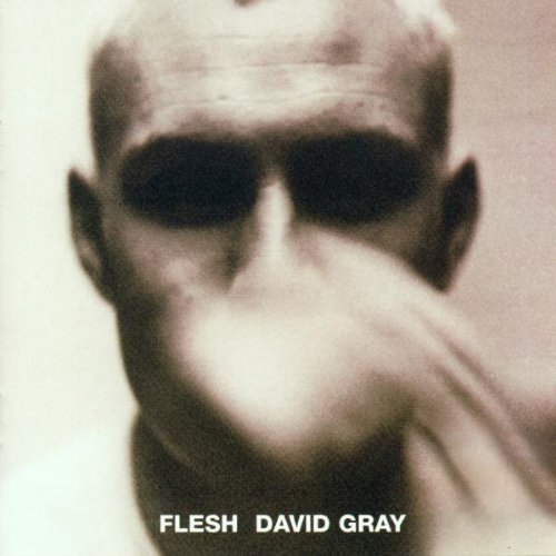 David Gray Falling Free cover art