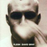 David Gray - Falling Free