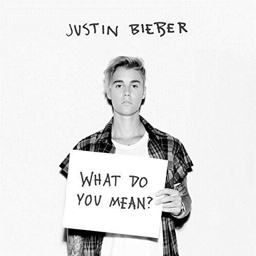 Justin Bieber What Do You Mean? cover art