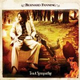 Bernard Fanning Wish You Well cover art