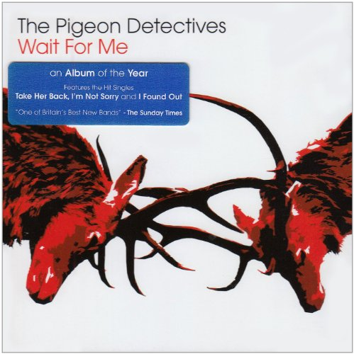 The Pigeon Detectives I'm Not Sorry cover art