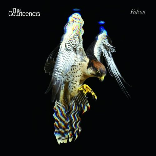 The Courteeners You Overdid It Doll cover art