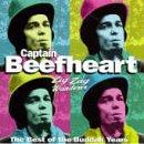 Captain Beefheart I'm Glad cover art