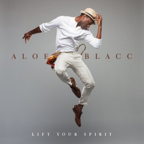 Aloe Blacc Owe It All cover art
