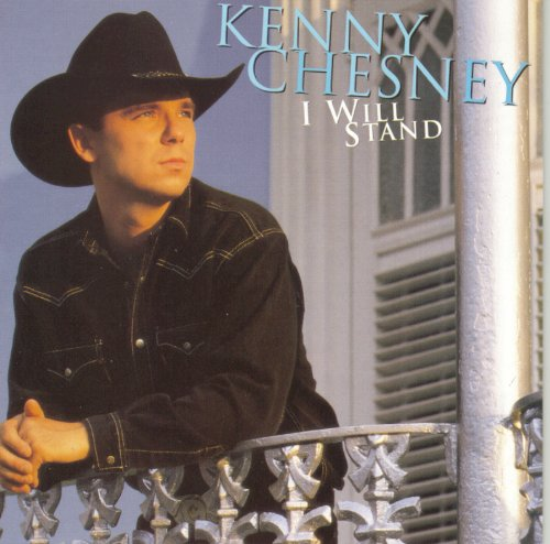 Kenny Chesney She's Got It All cover art