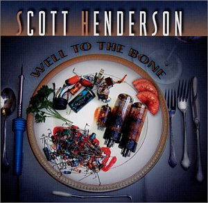 Scott Henderson Ashes cover art