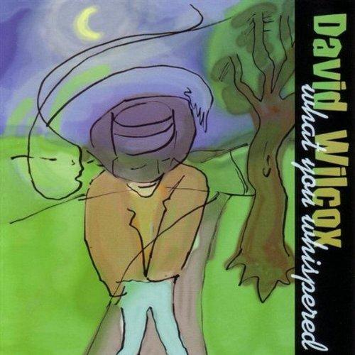 David Wilcox Deeper Still cover art