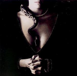 Whitesnake Slide It In cover art