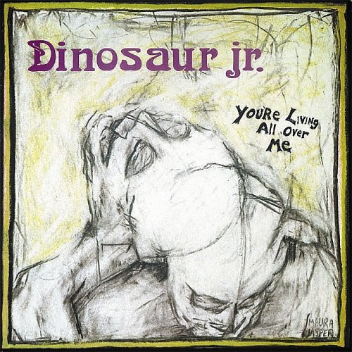 Dinosaur Jr. Raisans cover art