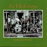 The Waterboys Fisherman's Blues l'art de couverture