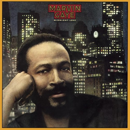 Marvin Gaye Sexual Healing cover art