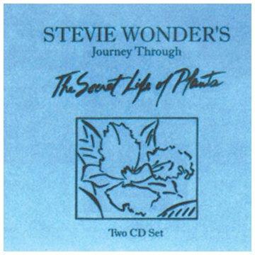 Stevie Wonder Outside My Window cover art