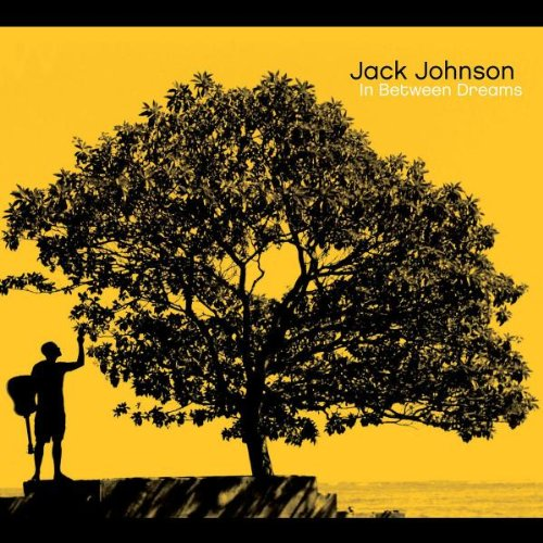 Jack Johnson If I Could cover art