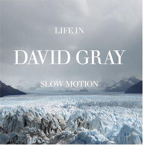 David Gray The One I Love cover art
