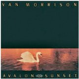 Van Morrison - Whenever God Shines His Light
