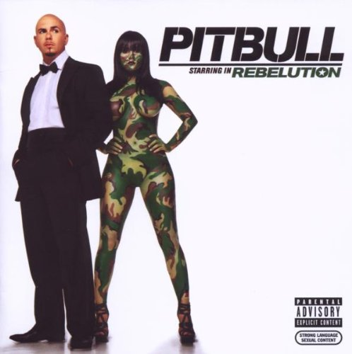 Pitbull I Know You Want Me (Calle Ocho) cover art