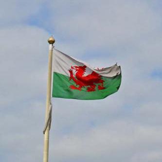 Welsh Folksong All Through The Night arte de la cubierta