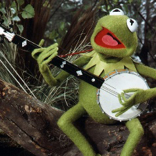 Kermit The Frog The Rainbow Connection cover art