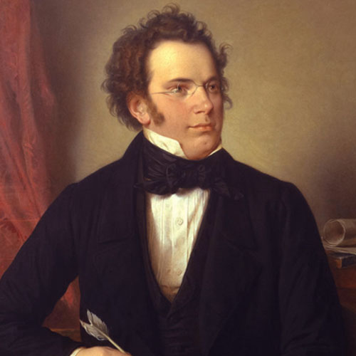 Franz Schubert Andantino cover art