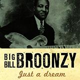 Big Bill Broonzy Long Tall Mama l'art de couverture