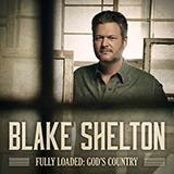 Blake Shelton - Nobody But You (duet with Gwen Stefani)