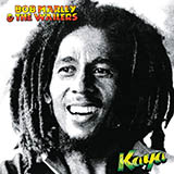 Bob Marley - Misty Morning