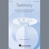 Stephen Schwartz - Testimony