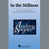 Audrey Snyder In the Stillness - Finger Cymbals cover art
