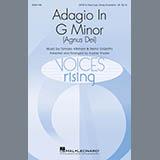 Adagio In Sol Minore (Adagio In G Minor) (arr. Audrey Snyder)