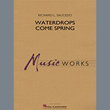 Richard L. Saucedo Waterdrops Come Spring - Flute cover kunst