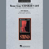Theme from Schindlers List - Orchestra