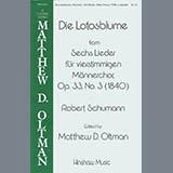 Die Lotosblume (Ed. Matthew D. Oltman)
