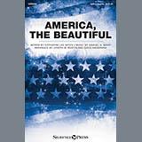 David Angerman America, The Beautiful cover art