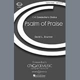 David Brunner - Psalm Of Praise