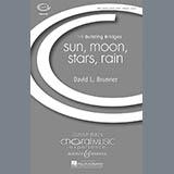David Brunner - Sun, Moon, Stars, Rain