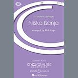 Nick Page Niska Banja cover art