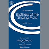 David Brunner - Brothers Of The Singing Void