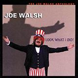 Joe Walsh All Night Long cover art