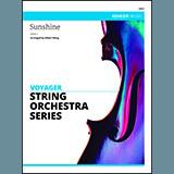 Wang Sunshine - Cello l'art de couverture