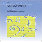 Denza Funiculi, funiculá - Flute cover art