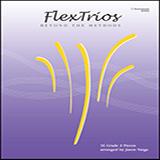Jason Varga Flextrios - Beyond The Methods (16 Pieces) - C Instruments cover art