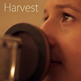Shaina Taub Harvest cover art