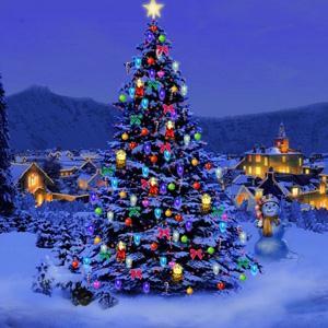 Chant de Noël Entre Le Boeuf Et L'âne Gris cover art