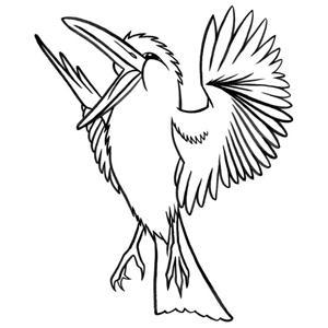 S. Wakefield The Kookaburra Laughed cover art